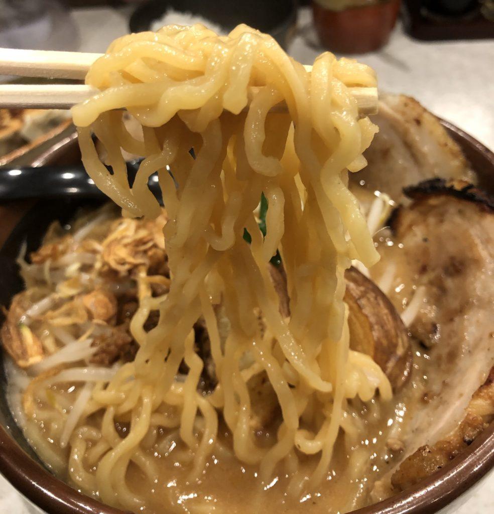 田所商店味噌ラーメン麺